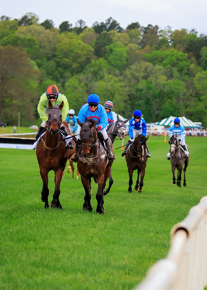 2015 Atlanta Steeplechase