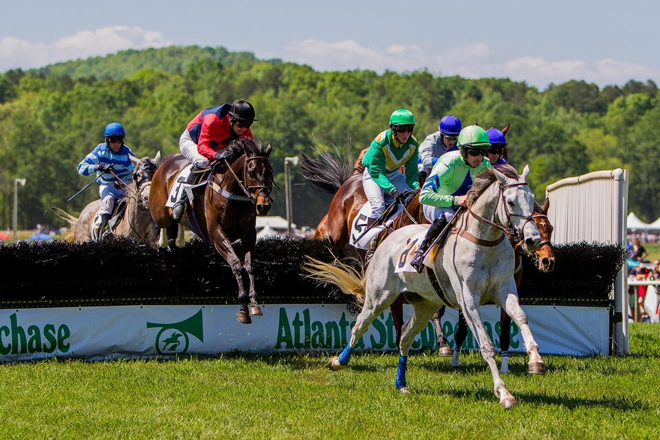 2016 Atlanta Steeplechase